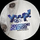 Logo YUUP! rotondo