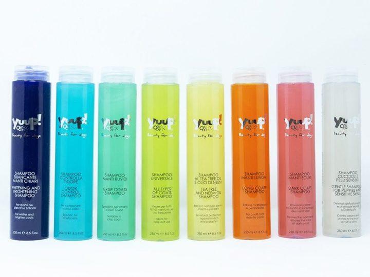 Shampoo antiparassitario per cani: un alleato contro le pulci
