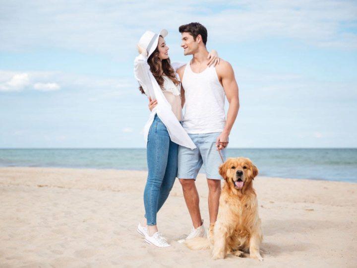 Sole, mare e vento: in spiaggia con il cane