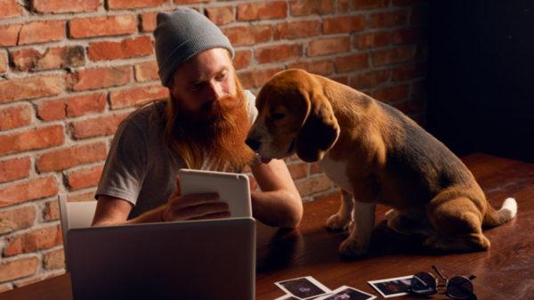 come fotografare cani e gatti