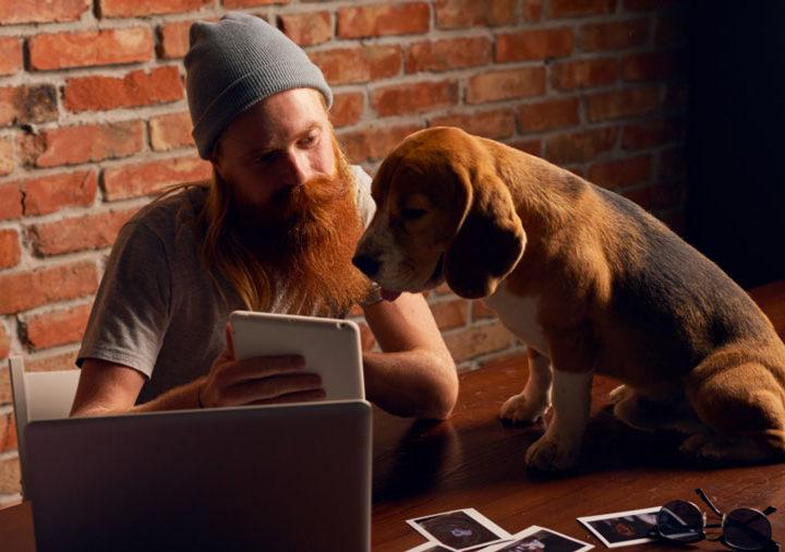 Come fotografare cani e gatti: tutti i segreti per influencer, toelettatori e negozi di animali.