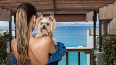 strutture pet friendly in Italia